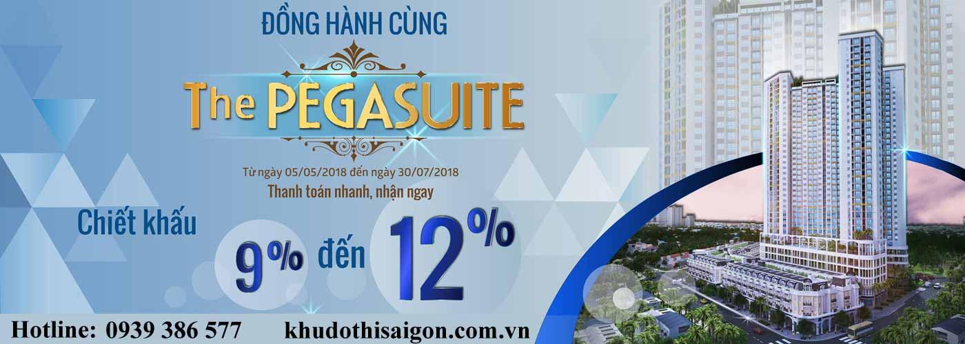 Căn hộ The Pegasuite – dự án đã bàn giao mặt tiền Tạ Quang Bửu